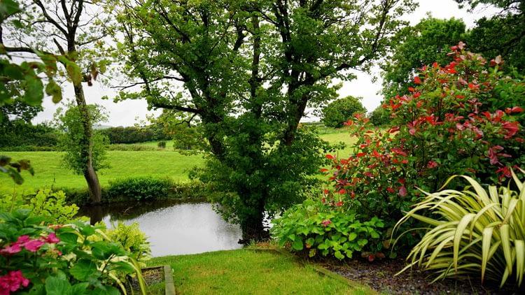 spring garden on the countryside