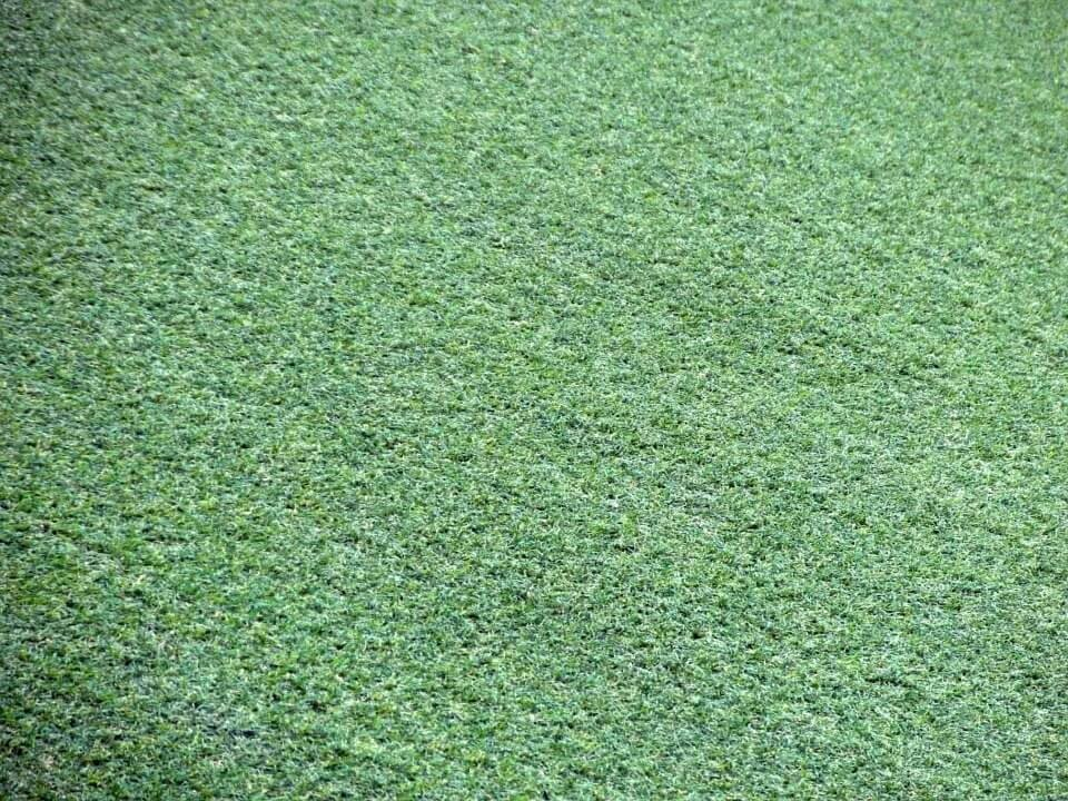 close up of artificial turf