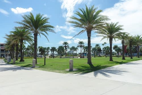 Coastal park landscaping in Southern California
