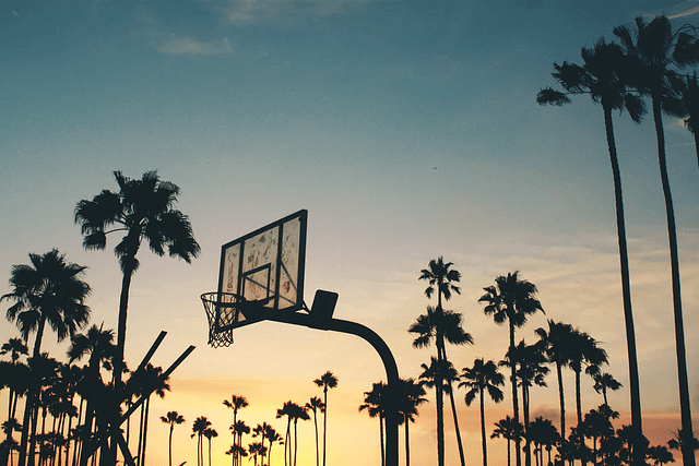 palm trees and basketball hoop against a blue and orange sunset