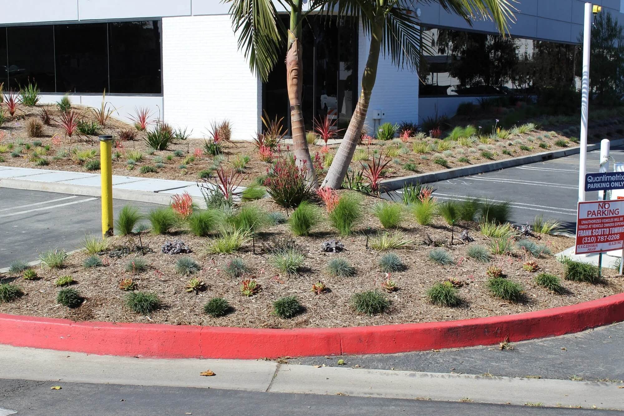 a curved corner in a parking lot with nicely arranged plants