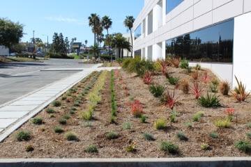 Gardening Service Los Angeles