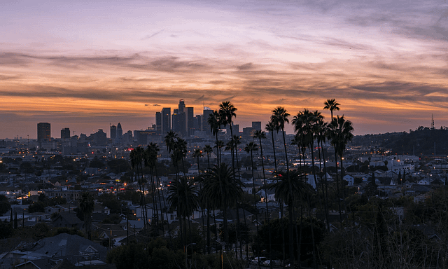 view of palm trees and los angeles skyline in front of orange sky